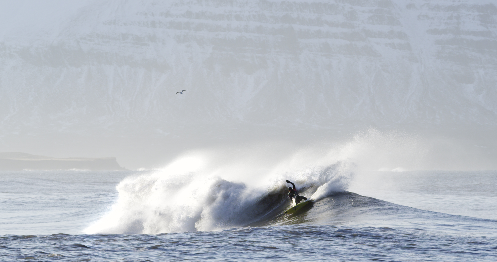 """Surfer in Iceland from the film """"YOW: Icelandic for Yes"""""""
