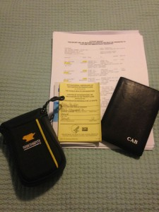 Mountainsmith Cyber camera case with travel documents