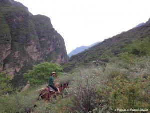 Man riding horse in Tiger Leaping Gorge, China