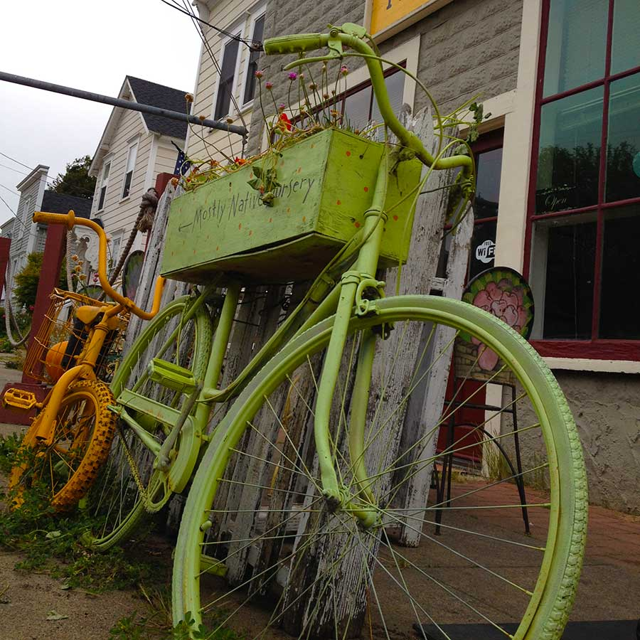The front of Cafe 2 in Tomales, California. Two old bikes are parked out front advertising a nearby greenhouse.