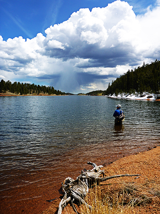 fisherman wades into a lake to cast a line