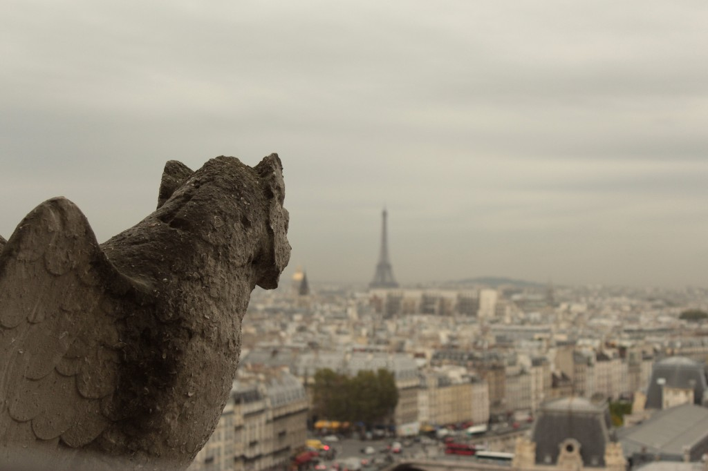 This was taken from Notre Dame.  France