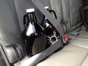 two growlers buckled into the back seat of a car