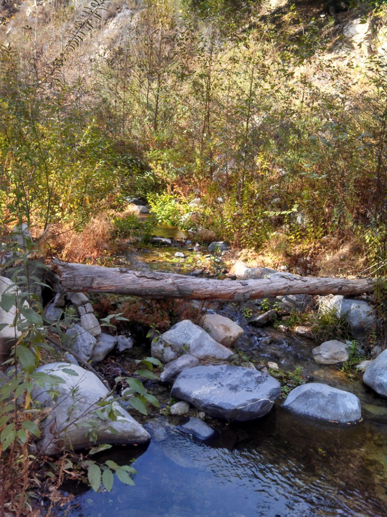 a stream with rocks in it