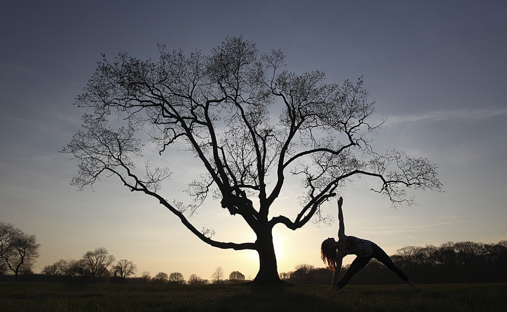 a woman does yoga in front of a silhouette of a tree
